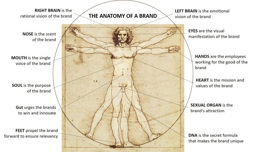 A visual representing a brand's anatomy